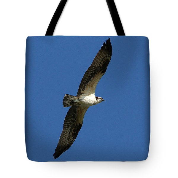 Tote Bag featuring the photograph Osprey In Blue Sky by William Selander