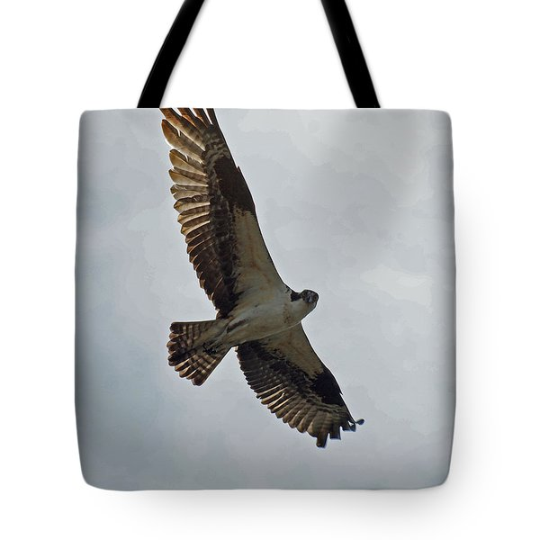Osprey In Flight Tote Bag by Ernie Echols