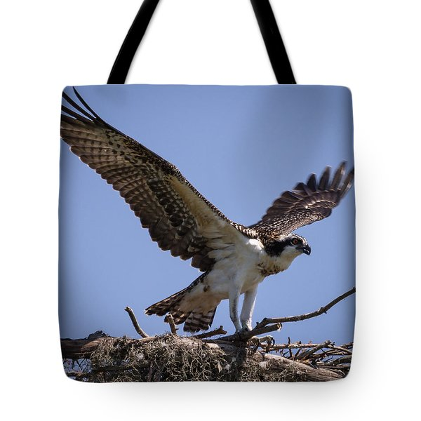 Tote Bag featuring the photograph Osprey In Nest 1 by Gregory Daley  PPSA