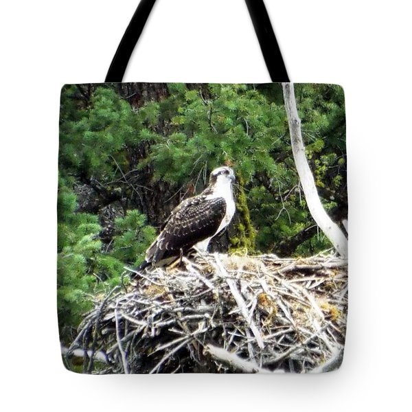 Osprey In Nest Tote Bag