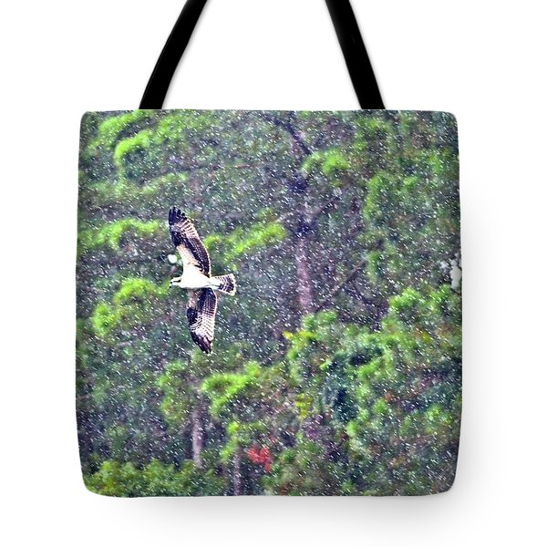 Osprey In Rain Tote Bag