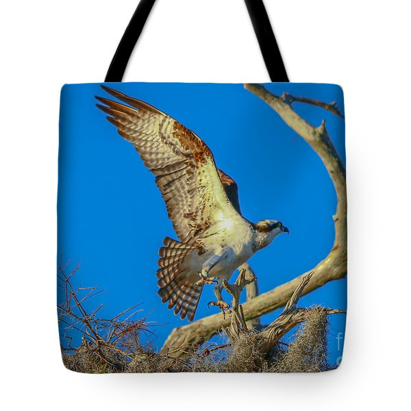 Osprey Landing On Branch Tote Bag