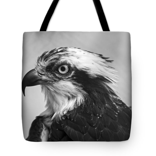 Osprey Monochrome Portrait Tote Bag