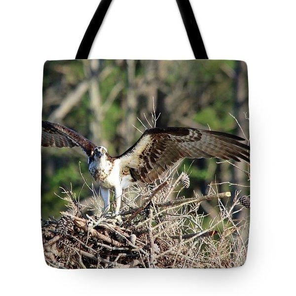 Osprey Nest Against Loblolly Tote Bag
