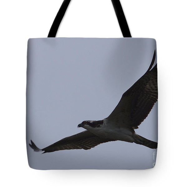 Osprey On The Tygart Tote Bag
