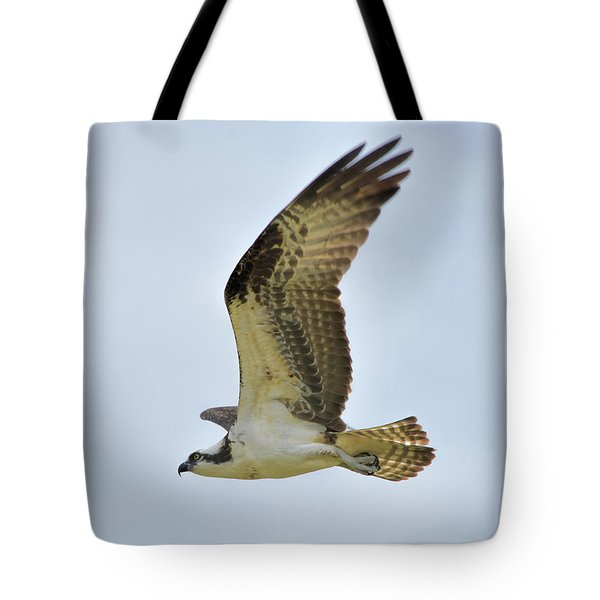 Osprey Upswing Tote Bag