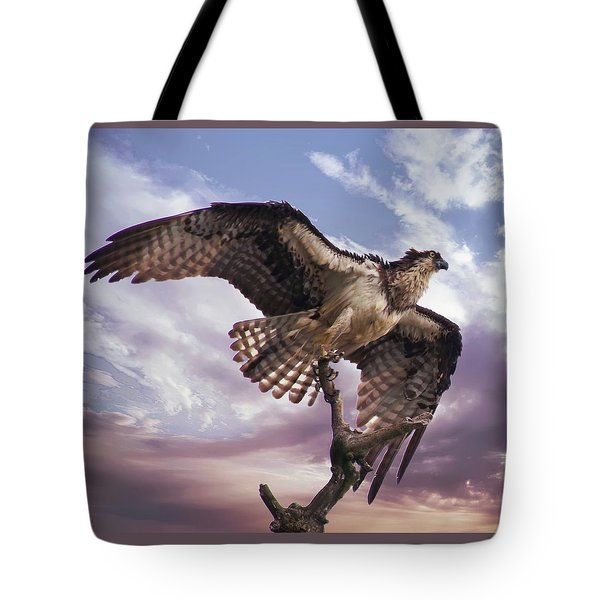 Osprey Wing Tote Bag