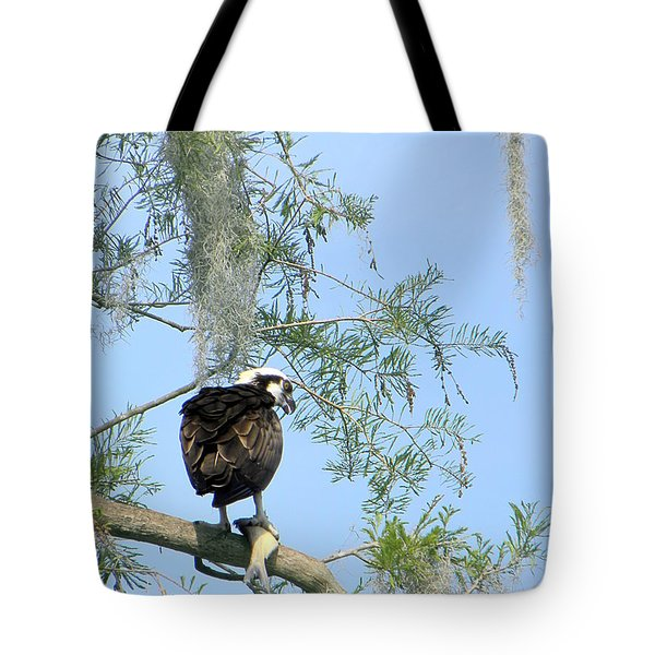 Osprey With A Fish Tote Bag by Chris Mercer