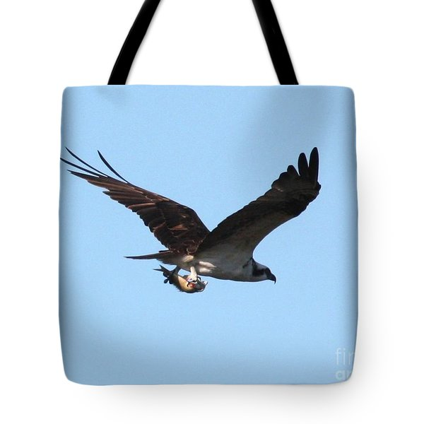 Osprey With Fish Tote Bag by Carol Groenen