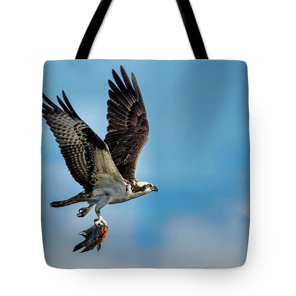 Osprey With Rainbow Bass 2 Tote Bag