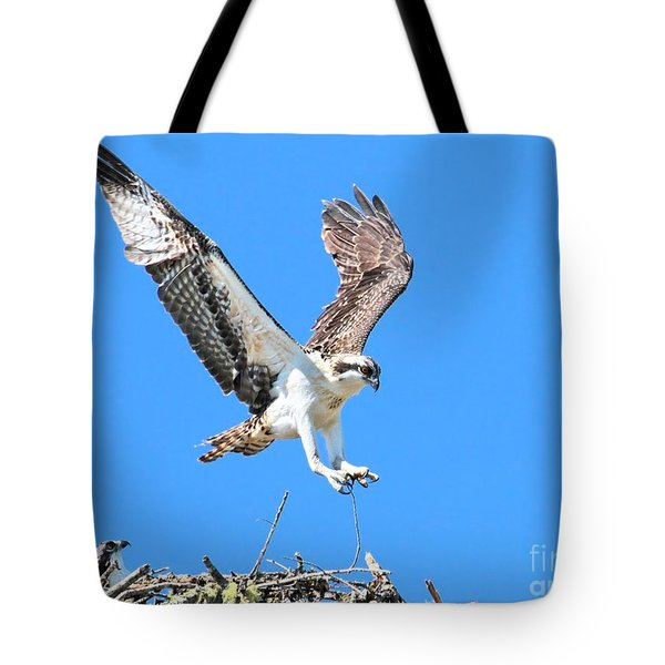 Ospreys Learning To Fly Tote Bag