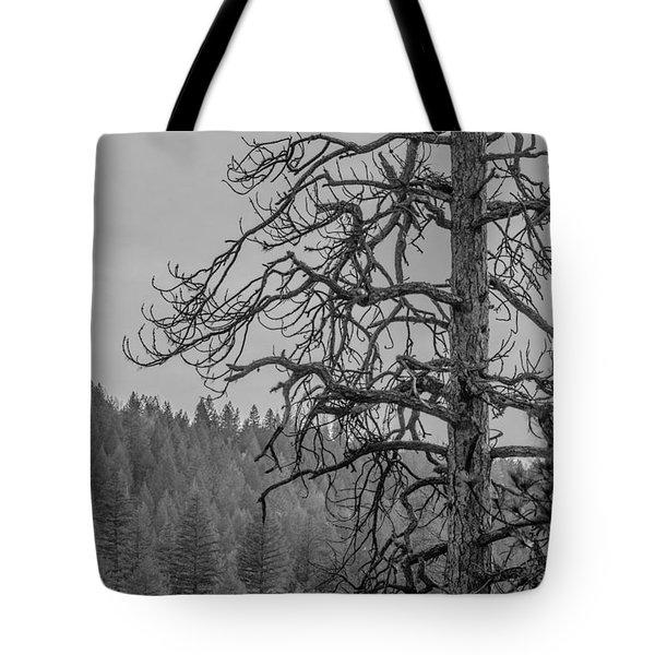 Osprey's Penthouse Tote Bag