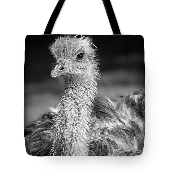 Ostrich Black And White Tote Bag