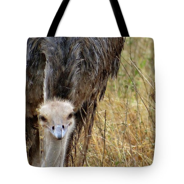 Ostrich In The Grass - Head Shot Tote Bag