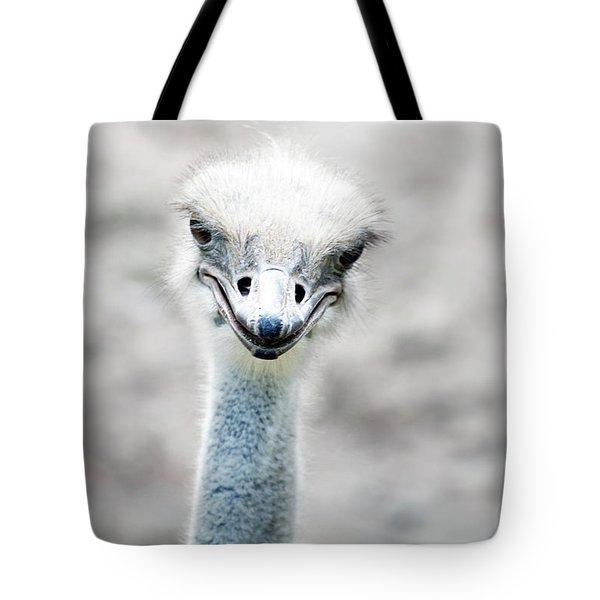 Ostrich Tote Bag by Lauren Mancke