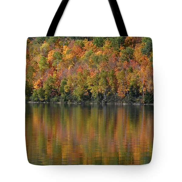Ottawa National Forest Tote Bag