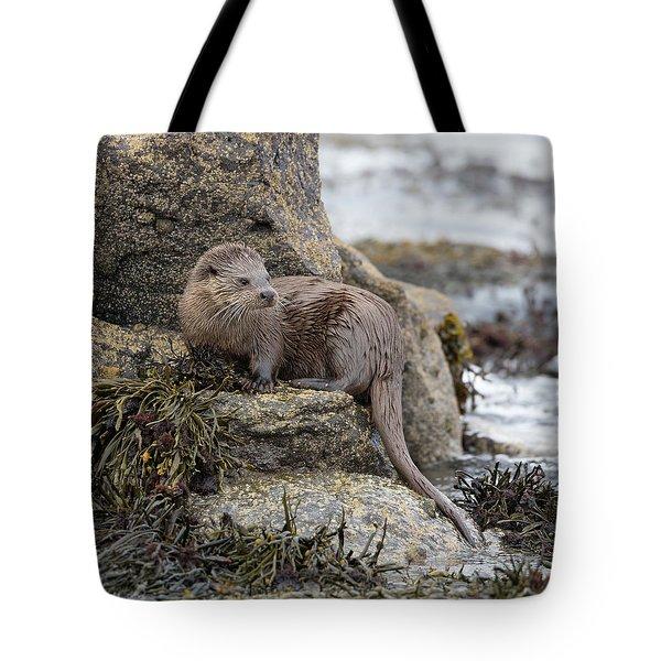 Otter Beside Loch Tote Bag