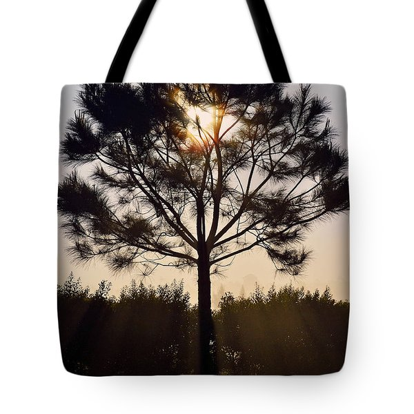 Our Borrowed Earth Tote Bag