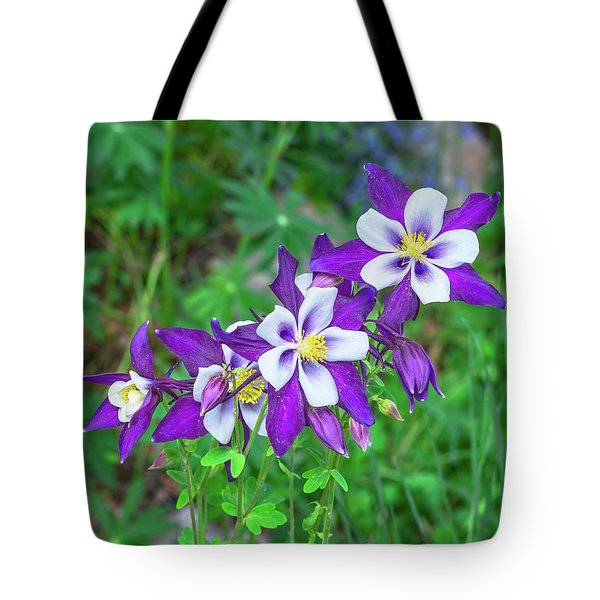 Our Gorgeous State Flower, Colorado Columbine  Tote Bag
