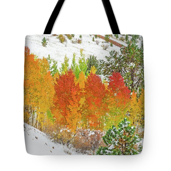 Our Winter Begins Around Mid October.  Tote Bag