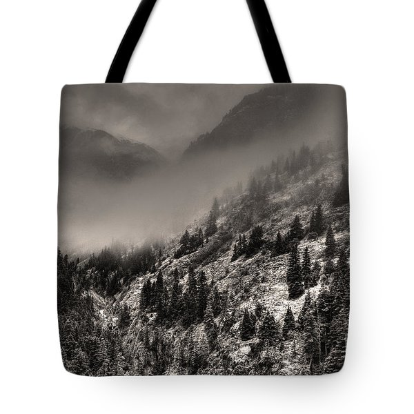 Ouray In Chinese Brush IIi Tote Bag