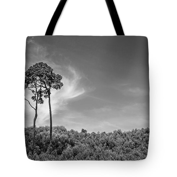 Ours Tote Bag