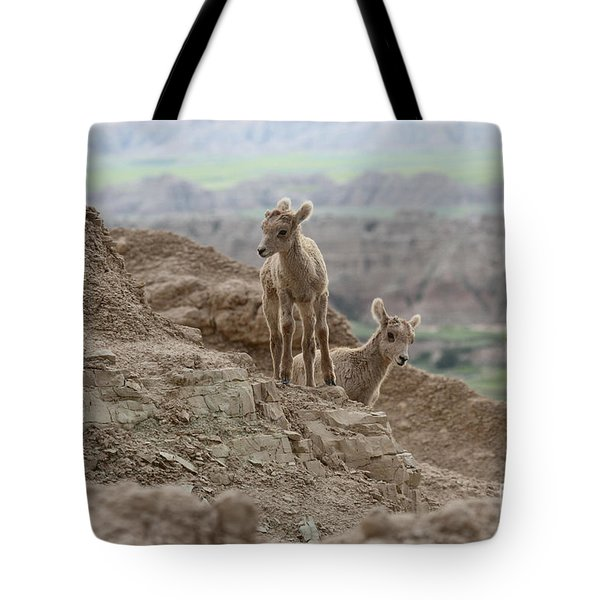 Out Exploring The Badlands Tote Bag