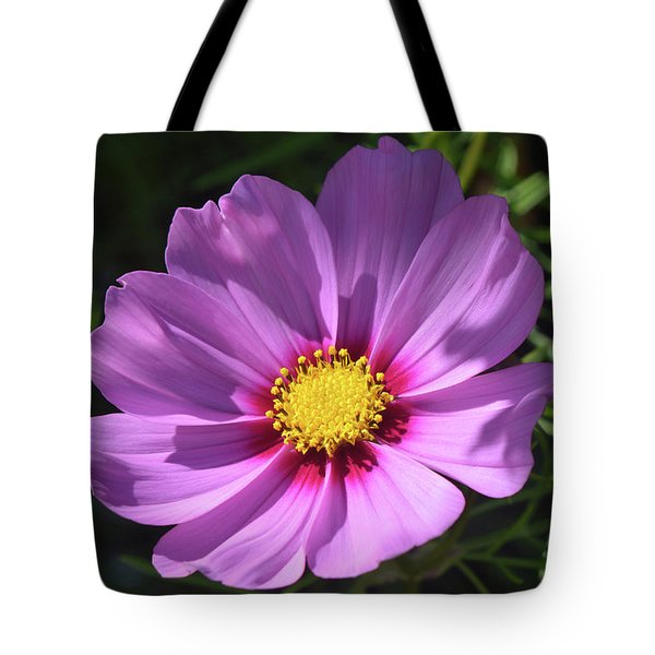 Tote Bag featuring the photograph Out In The Sun. by Terence Davis