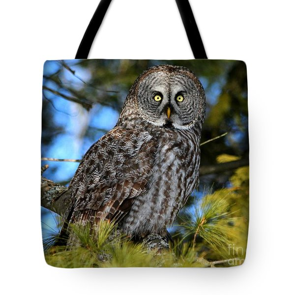 Out Of The Shadows Tote Bag by Heather King