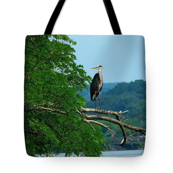 Out On A Limb Tote Bag by Donald C Morgan