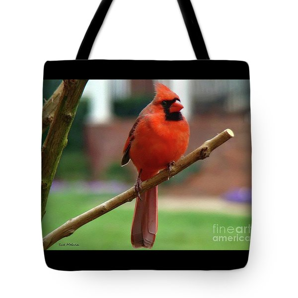 Tote Bag featuring the photograph Out On A Limb by Sue Melvin