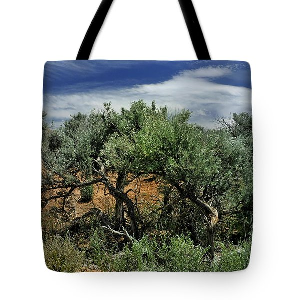 Out On The Mesa 3 Tote Bag