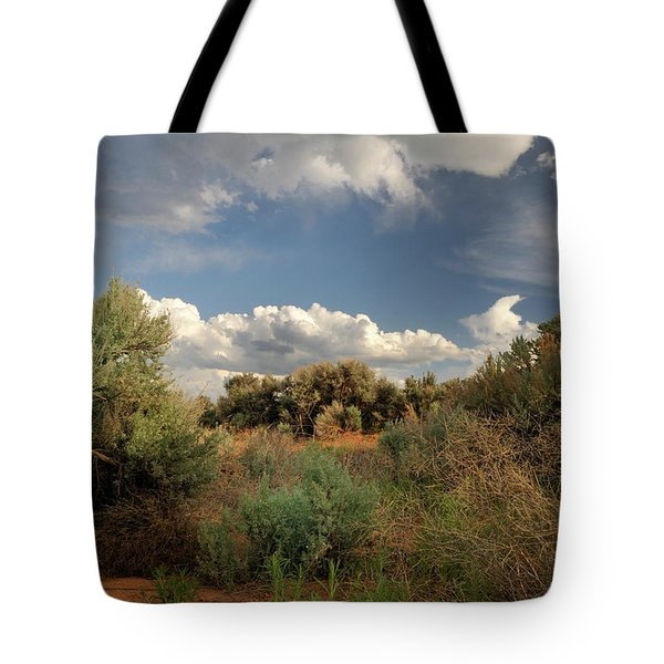 Tote Bag featuring the photograph Out On The Mesa 4 by Ron Cline