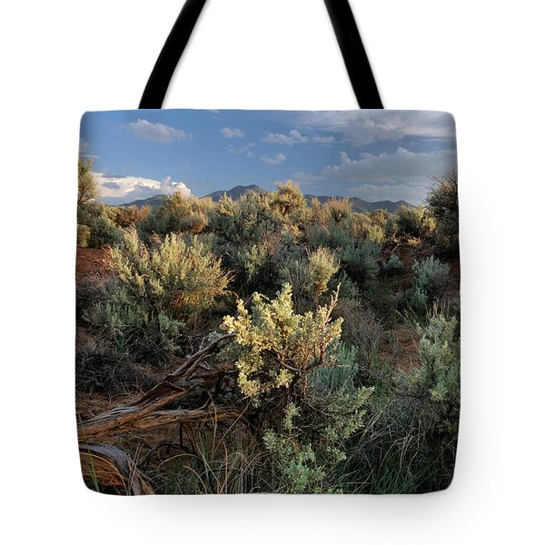 Tote Bag featuring the photograph Out On The Mesa 7 by Ron Cline