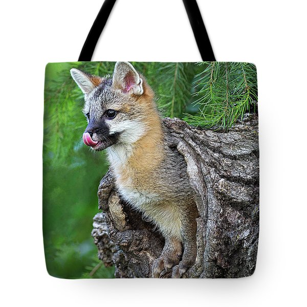 Out Pops A Gray Fox Tote Bag
