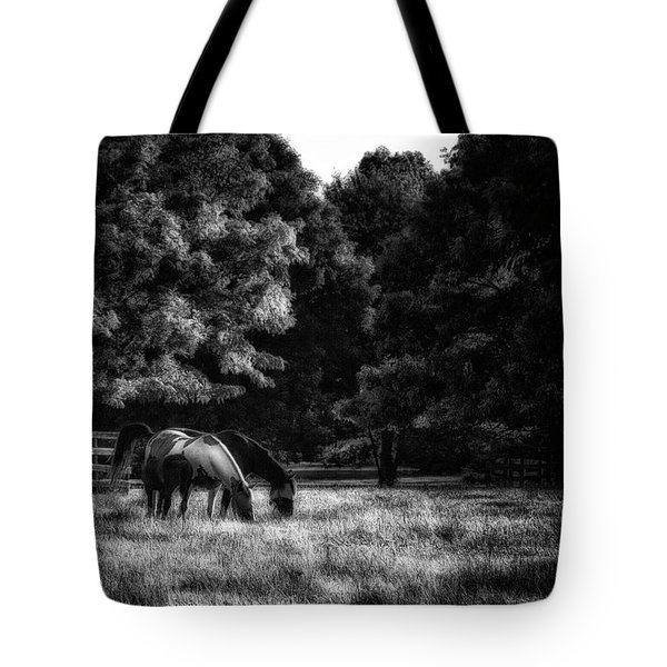 Tote Bag featuring the photograph Out To Pasture Bw by Mark Fuller