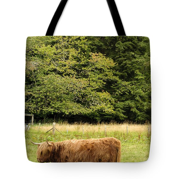Tote Bag featuring the photograph Out To Pasture by Christi Kraft
