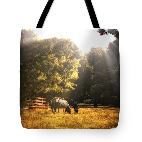 Tote Bag featuring the photograph Out To Pasture by Mark Fuller