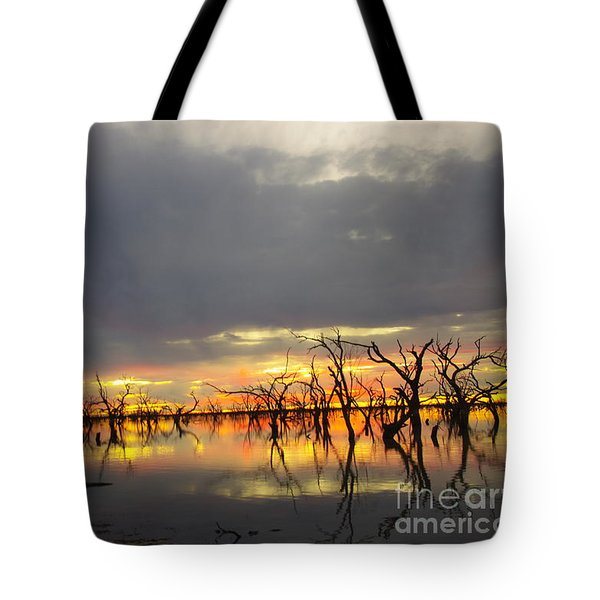 Outback Sunset Tote Bag by Blair Stuart