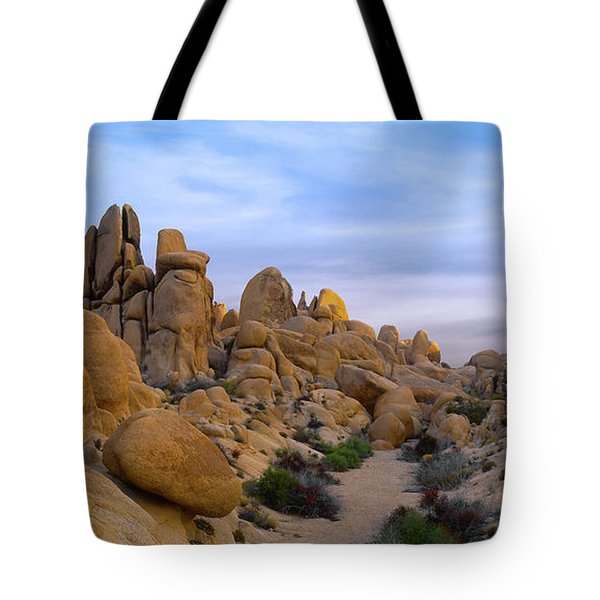 Outer Limits Pano View Tote Bag
