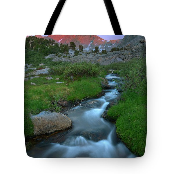 Outlet Tote Bag