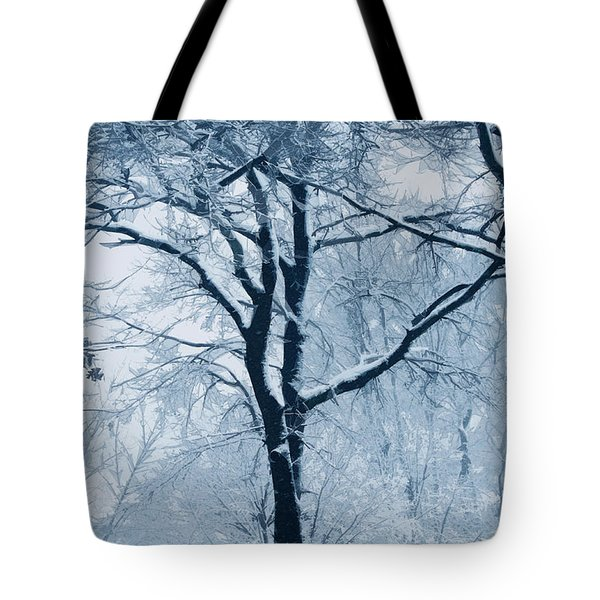Outside My Window Tote Bag by Linda Sannuti