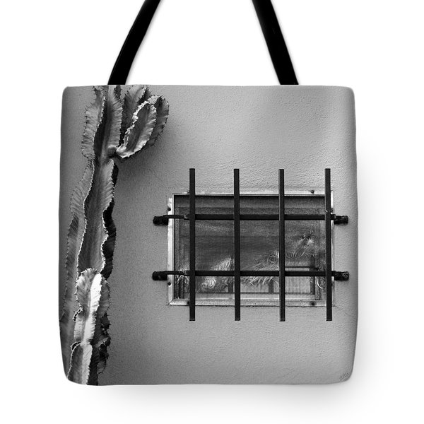 Outsiders - Cactus By The Window Tote Bag by Ben and Raisa Gertsberg