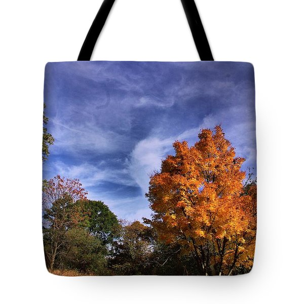 Outstanding In My Field...lol Tote Bag by John S