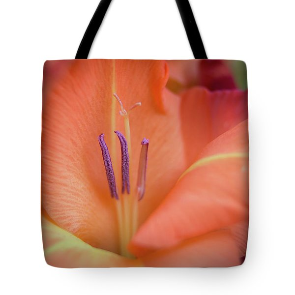 Ovation In Orange 4 Tote Bag