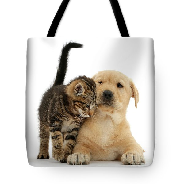 Over Friendly Kitten Tote Bag
