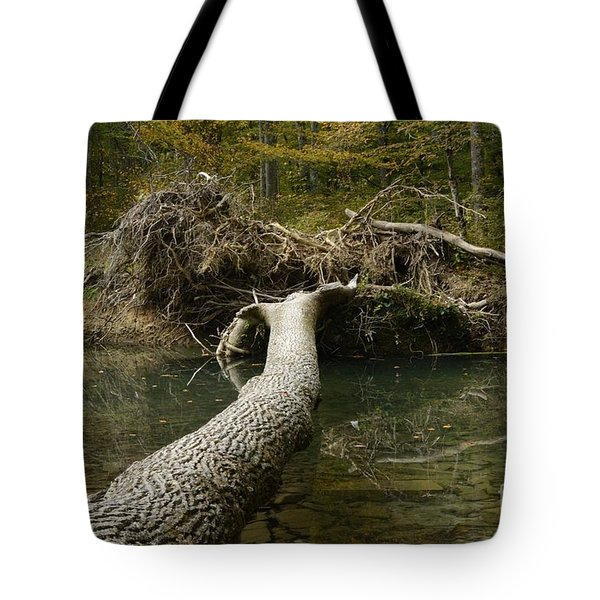 Over On Clover Tote Bag by Randy Bodkins
