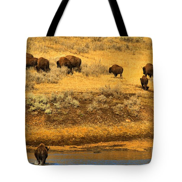 Tote Bag featuring the photograph Over The River And Up The Hill by Adam Jewell