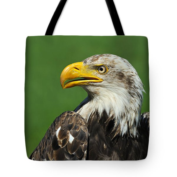 Over The Shoulder Tote Bag by Tony Beck