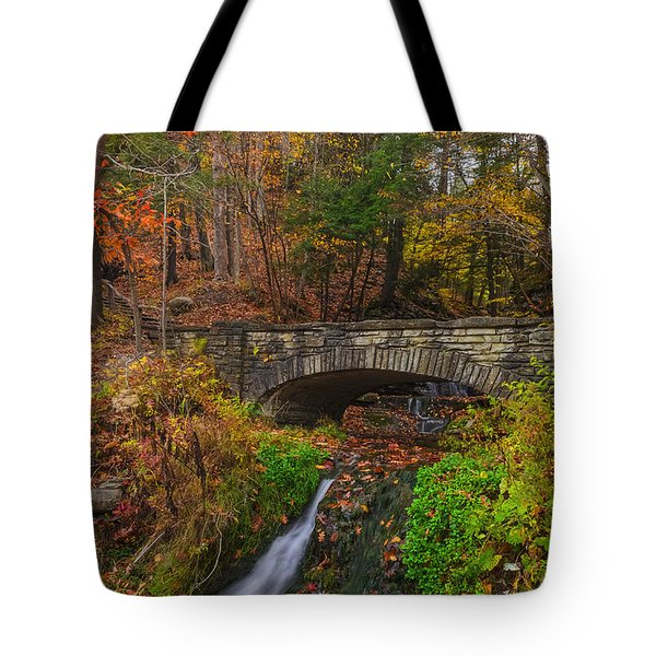 Over The Stream Tote Bag by Mark Papke